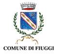 Logo Comune di Fiuggi
